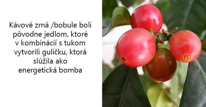 kava-Lishou-zaujimavosti