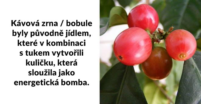 Kava-Lishou-zajimavosti